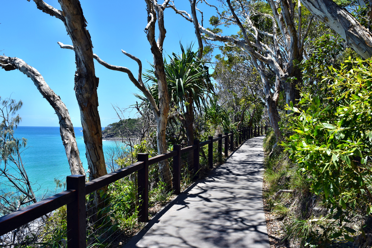 Coastal Track in Noosa National Park is wheelchair-accessible