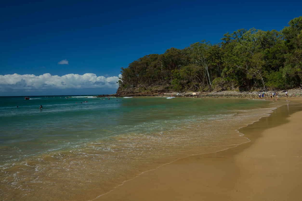 Little Cove at Noosa