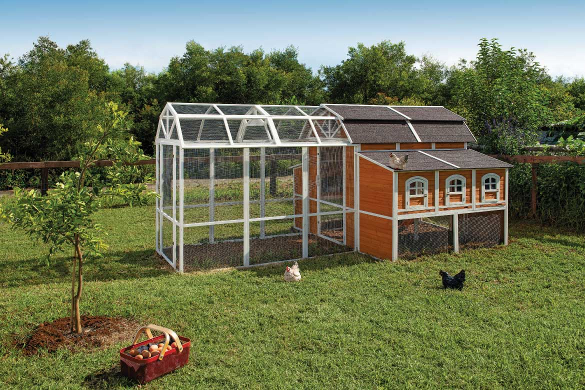 Prize Home Chicken coop